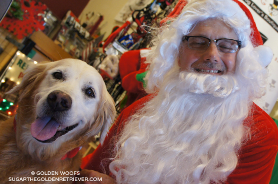 DOG & Santa Holiday Joyful Moments
