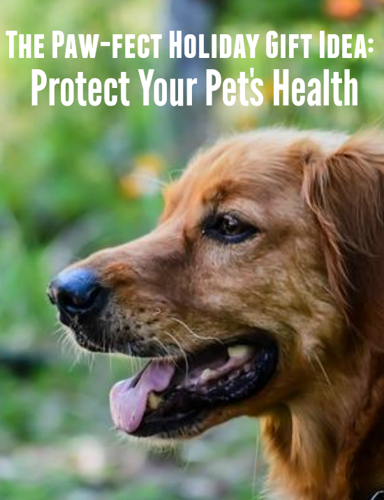 Protect Your Pet's Health