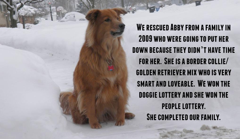 Abby Adoption Story