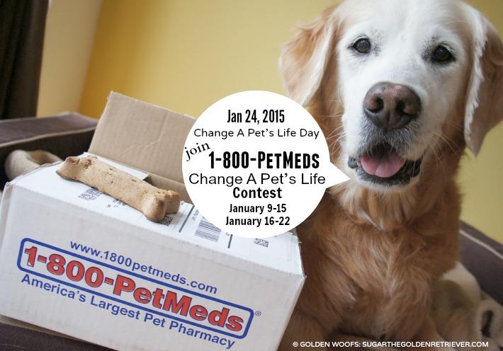 Change A Pet's Life Contest