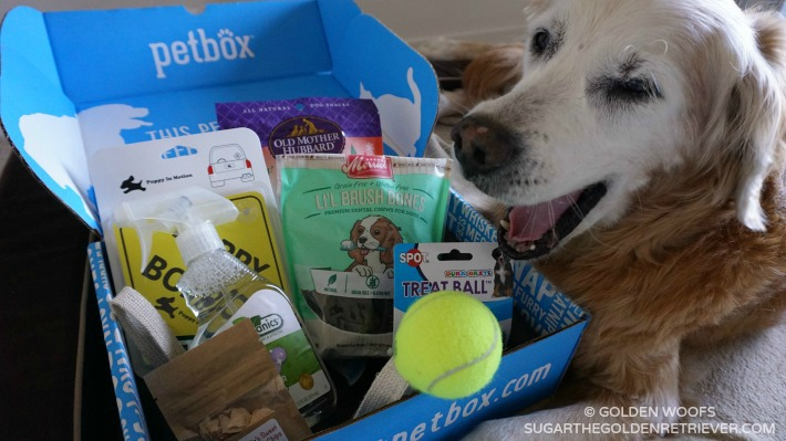 PetBox Pampered Pet Happy Pet