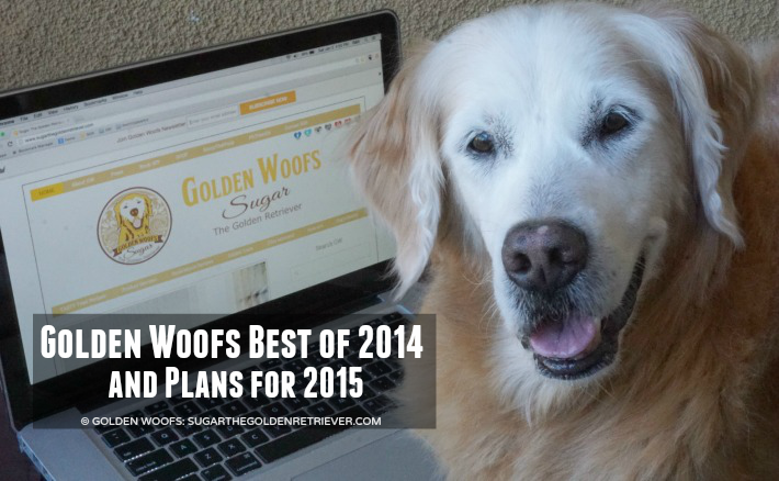 Golden Woofs Best of 2014 and Plans for 2015
