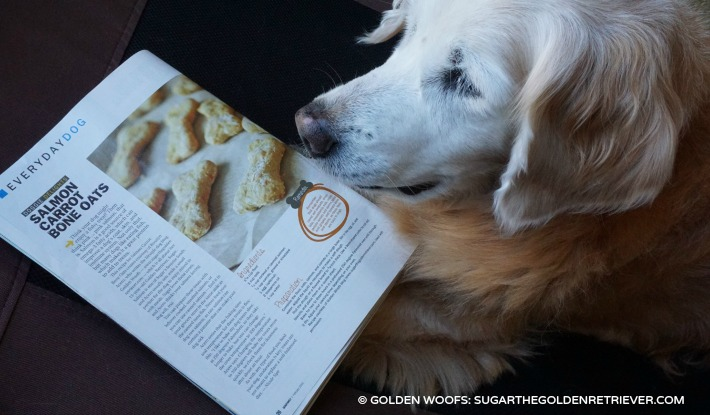 Golden Woofs Dog Treat Recipe in Dog Fancy Magazine
