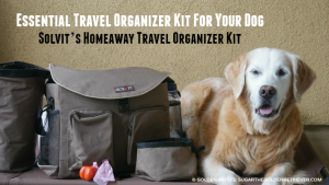 HomeAway Travel Organizer Kit by Solvit