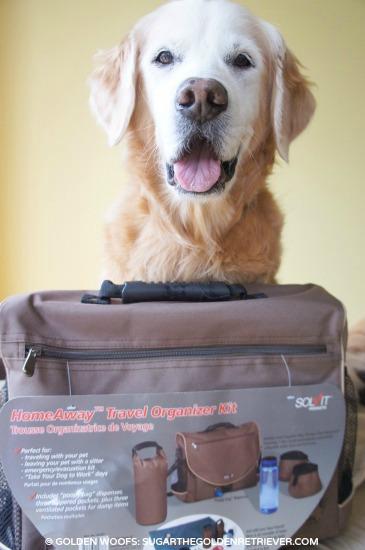 Solvit HomeAway Travel Organizer Kit