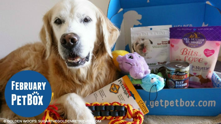 PetBox: 2015 February Review