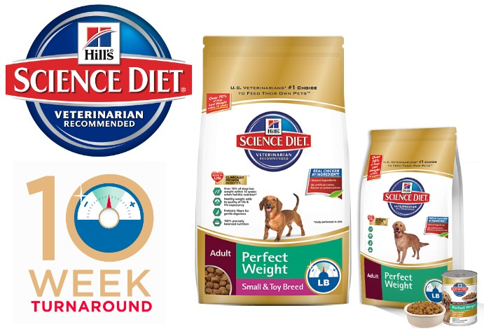Best dog food for weight loss uk 2014