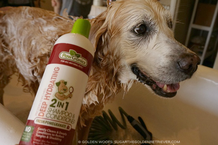 Pawganics Shampoo Pamper Your Dog