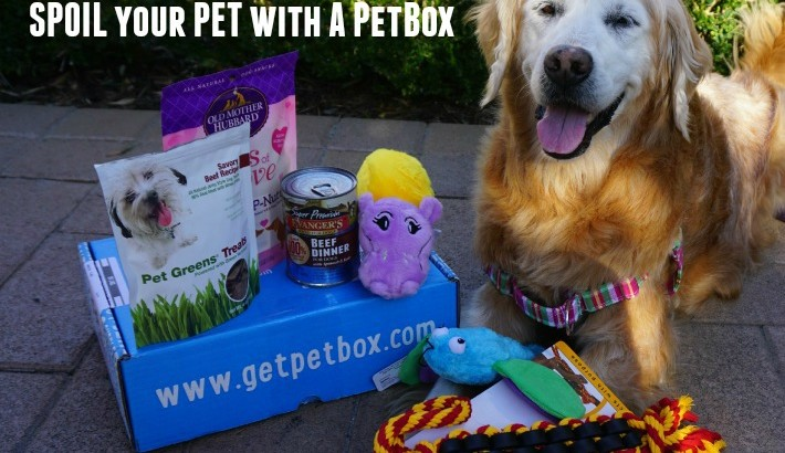 Spoil Your Pet With A PetBox