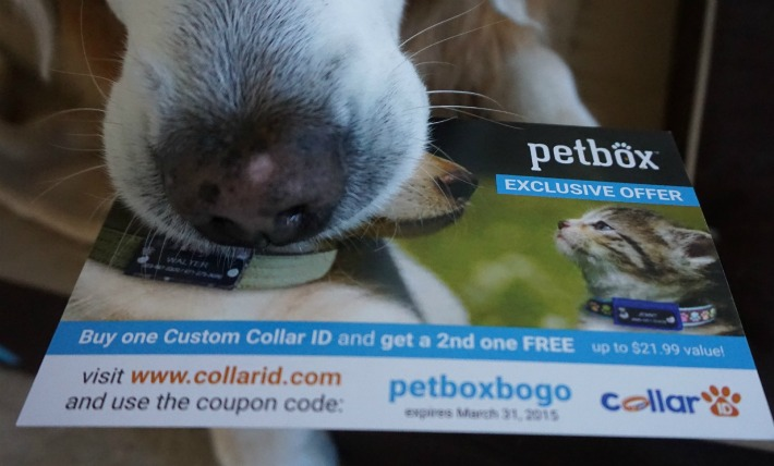 PetBox Special Offer