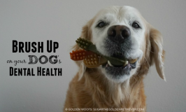 Brush-Up Dog Dental Treats