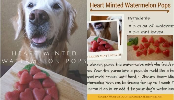 Heart Minted Watermelon Pops For Fresh Dog Breath