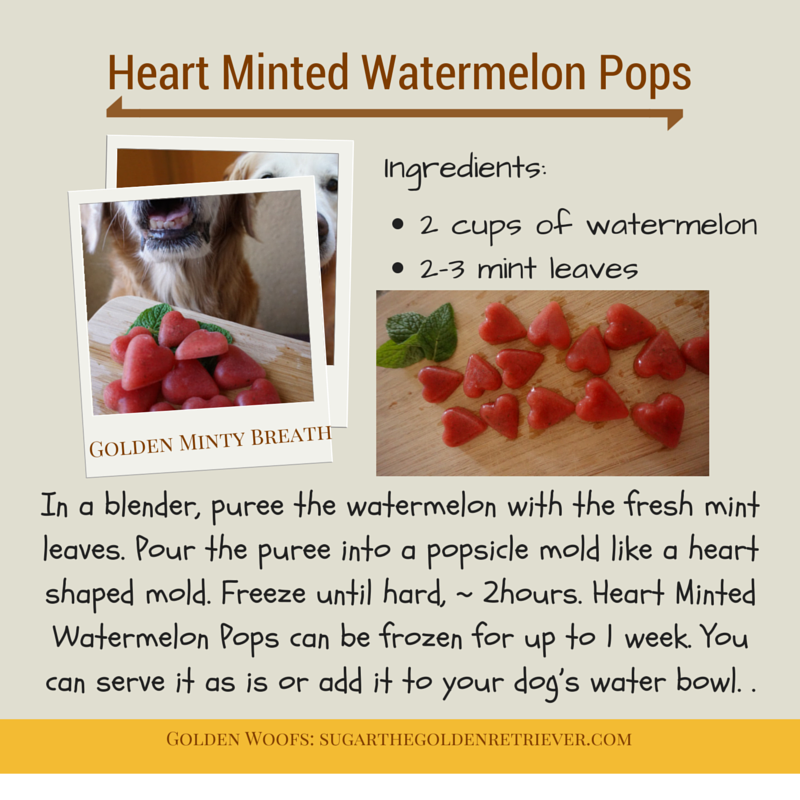Minted Watermelon Pops Dog Treats
