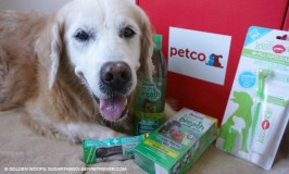 Pet's Oral Health Products: Petco
