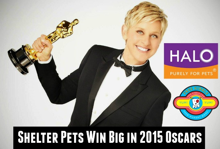 Shelter Pets Win Oscars Swag