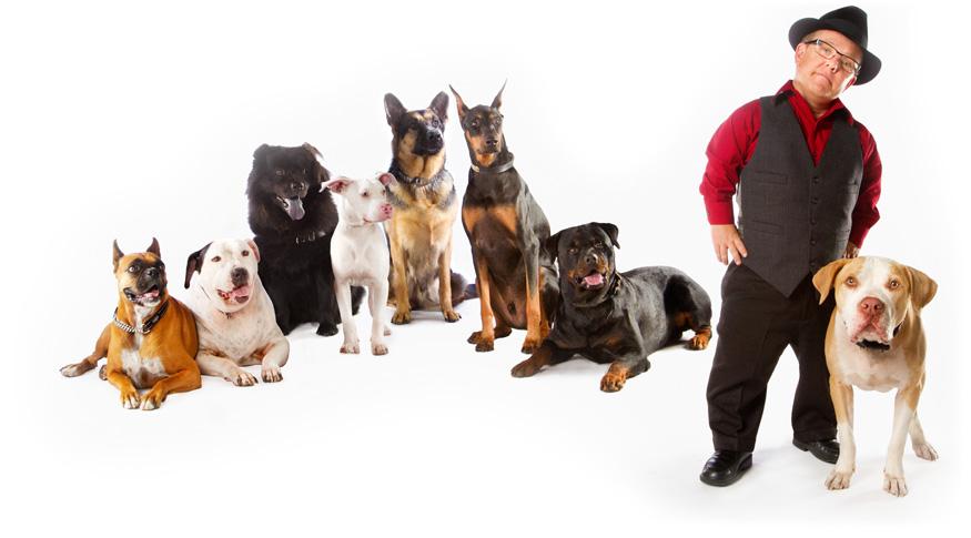 Shorty Amazing Pet Expos