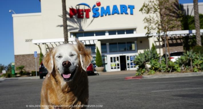 Sugar visits PetSmart