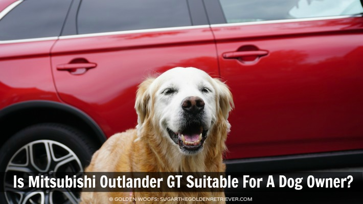Is Mitsubishi Outlander GT Suitable For A Dog Owner?