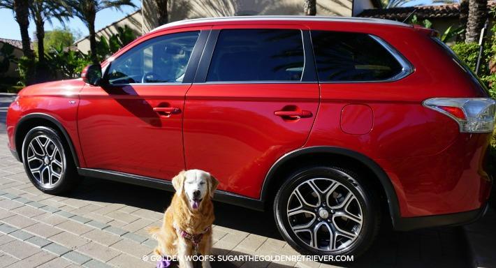 Mitsubishi Outlander - Dog Friendly
