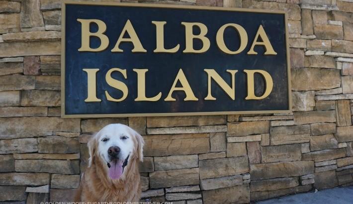 Photos from Balboa Island