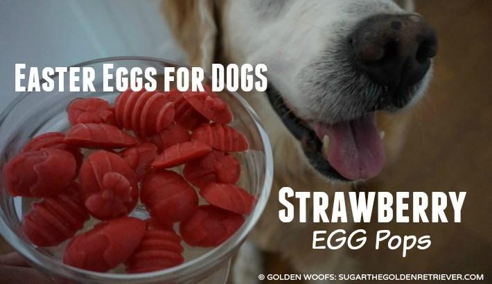 Easter Eggs for Dogs: Strawberry Egg Pops