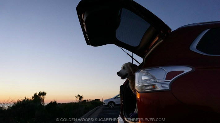 Sunset w/ Mitsubishi Outlander
