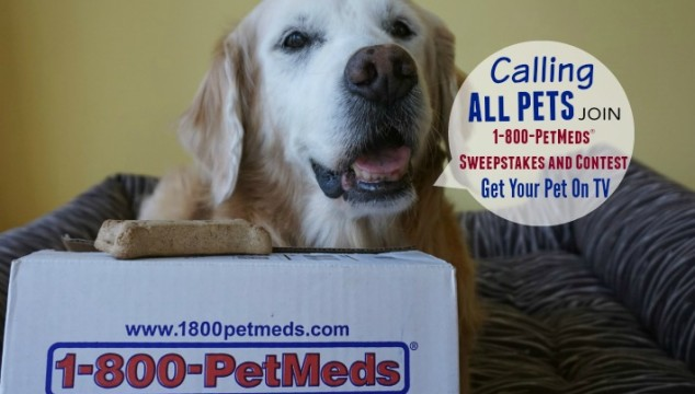 Calling All Pets1-800-PetMeds Sweepstakes & Contest