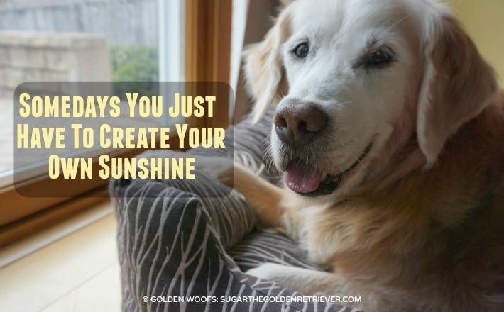 Create Your Sunshine