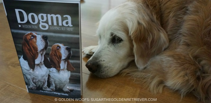 Dogma Book Review