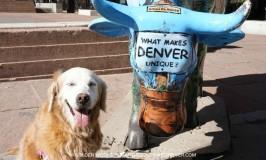What Makes Denver Unique