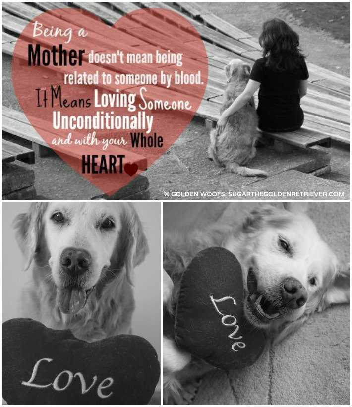 Golden LOVE to all Dog Moms