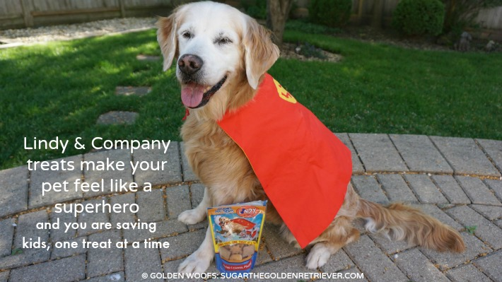 Lindy Pet Treats Superhero Saving  Kids Life