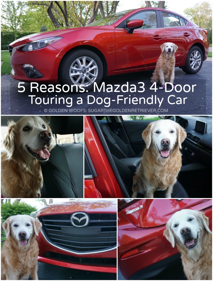 Mazda3 4-door car dog friendly