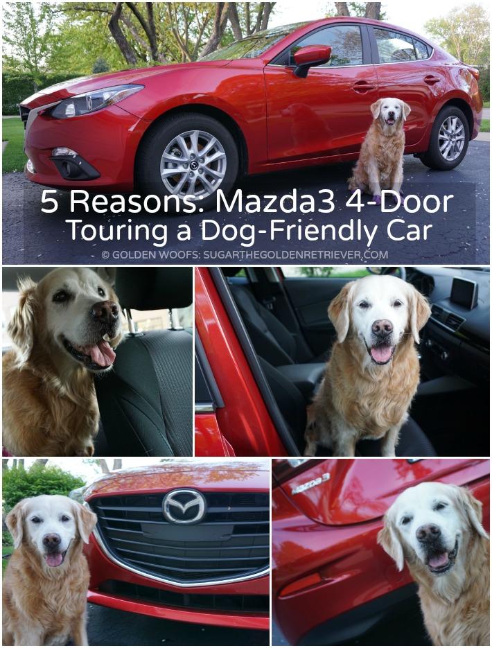 Mazda3 4-door car dog friendly