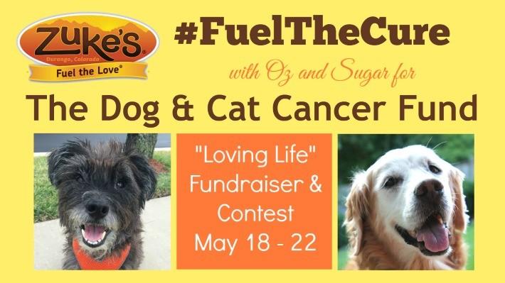 Zuke's Loving Life Contest & Fundraiser Blog Hop #FuelTheCure