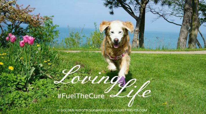 Loving Life FuelTheCure Zukes
