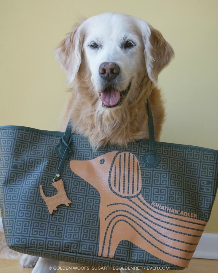 Mother's Day Present Jonath Anadler Tote west Dog