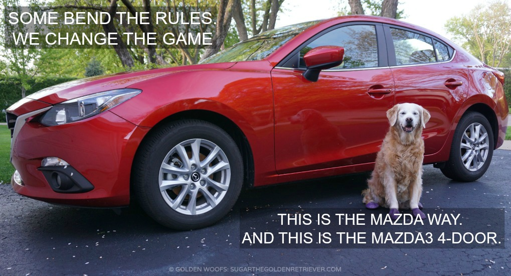 Mazda3 Dog Friendly