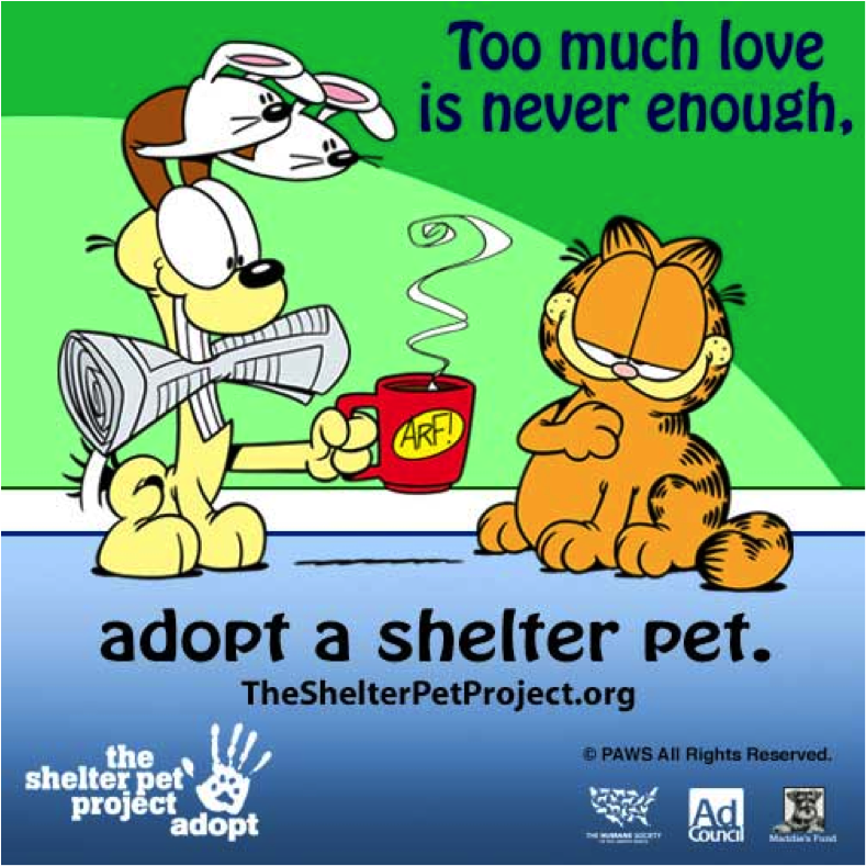 pet shelter project 27 million healthy and treatable pets in shelters need our help in finding a home each year bringing that number all the way to zero is the goal of the shelter pet project campaign, which aims to encourage millions of pet lovers to make shelters the first choice and desired way for acquiring companion animals.