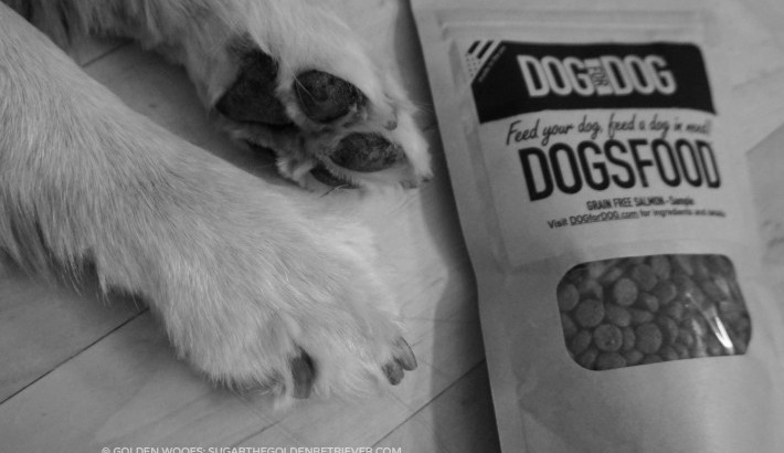Feed Your Dog, Feed A Dog In Need | DOG for DOG