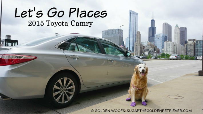 Let's Go Places Drive Toyota Camry