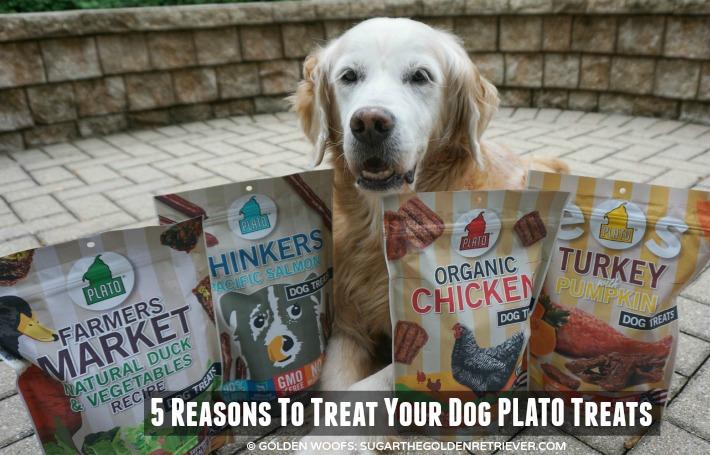 Plato Treats : Dog Treats