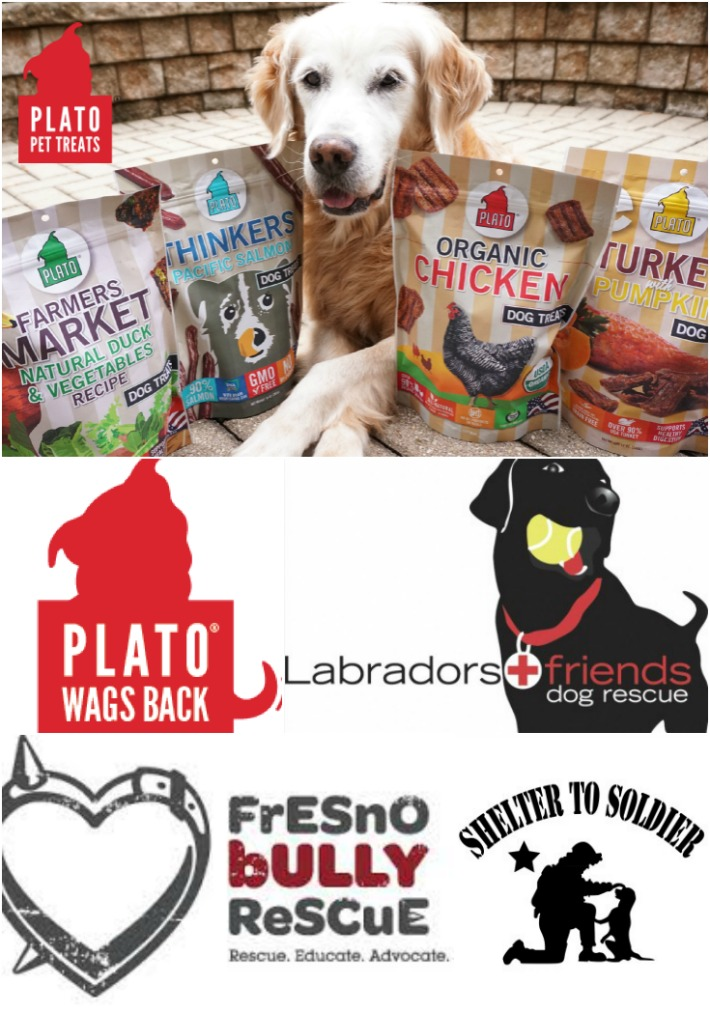 Plato Pet Treats' Plato Wags Back