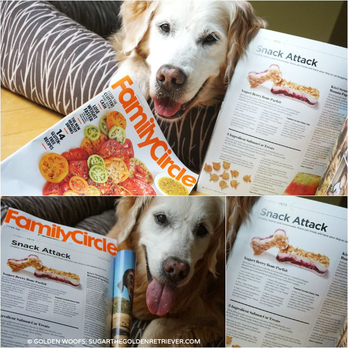 Dog Treat Recipe Featured In Family Circle