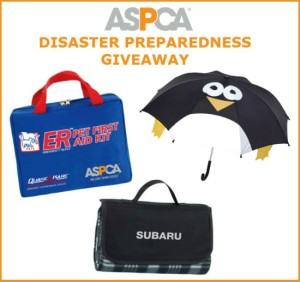 ASPCA Disaster Preparation