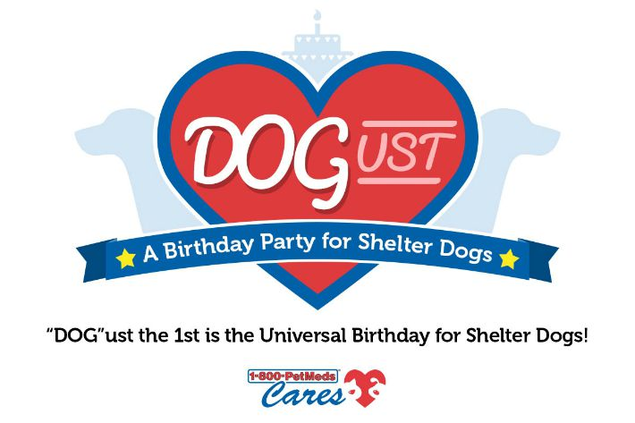DOGust Birthday for Shelter Dogs