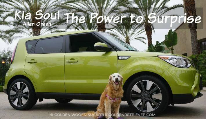 Dog-Friendly Rides with Kia Soul Alien #DriveKia