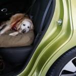 Kia Soul dog friendly