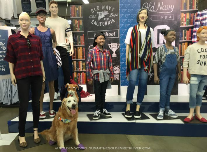 Old Navy Back to School Display DOG