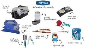 Petmate Adoption Essentials